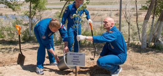 L'equipaggio della Soyuz TMA-13M pianta il tradizionale albero a Baikonur. Credit: NASA/Victor Zelentsov