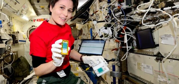 Samantha Cristoforetti con una cassetta di moscerini della frutta dell'esperimento Fruit Flies Lab. Credit: ESA NASA