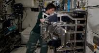 Samantha Cristoforetti effettua la manutenzione del Biolab nel modulo Columbus. Credit: ESA/NASA