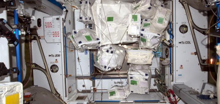 Il cono all'estremità di Columbus con le borse da riportare a terra con Dragon SpX-6. Credit: ESA/NASA