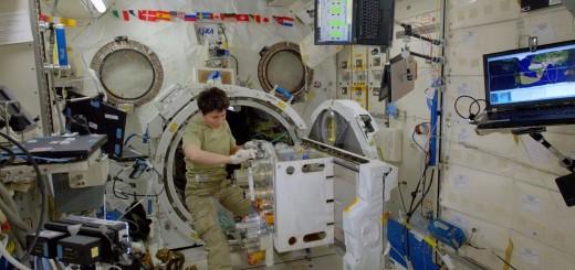 Samantha Cristoforetti lavora all'airlock del modulo JEM. Credit: ESA/NASA