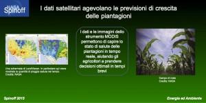 Il software LandViewer rielabora i dati di MODIS per prevedere in tempo reale il tasso di crescita delle piantagioni ©NASA / Veronica Remondini