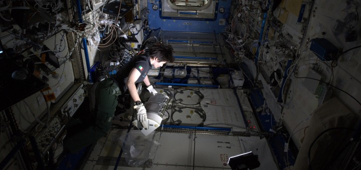 Samantha Cristoforetti preleva i campioni dell'esperimento Differenziazione delle Cellule Staminali dal congelatore MELFI. Credit: ESA/NASA