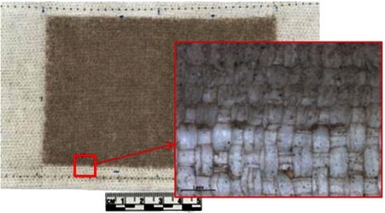 Abrasione prodotta da polvere lunare simulata - credit NASA