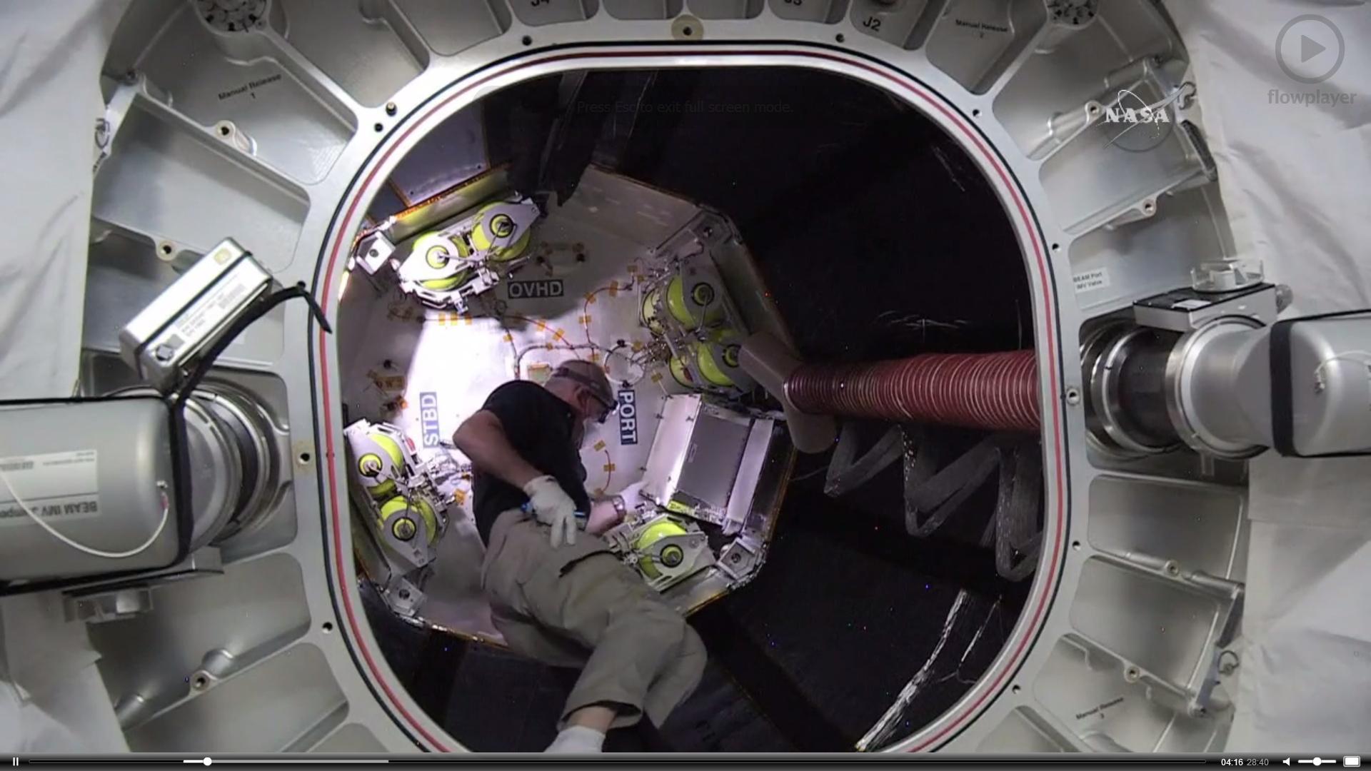 L'astronauta Jeff Williams della NASA al lavoro dentro al modulo BEAM.