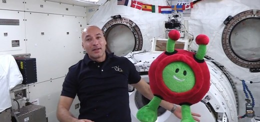 Paxi_on_the_ISS