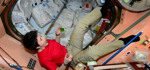Samantha Cristoforetti mangia gli sparagi reidratati nel Nodo 1. Credit: ESA/NASA