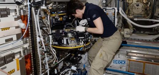 Samantha Cristoforetti lavora con il Modular Cultivation System di Columbus. Credit: ESA/NASA