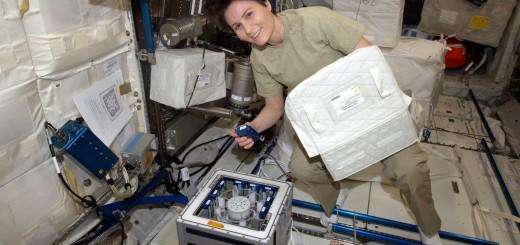 Samantha Cristoforetti al lavoro su una centrifuga-incubatrice Kubik. Credit: ESA/NASA